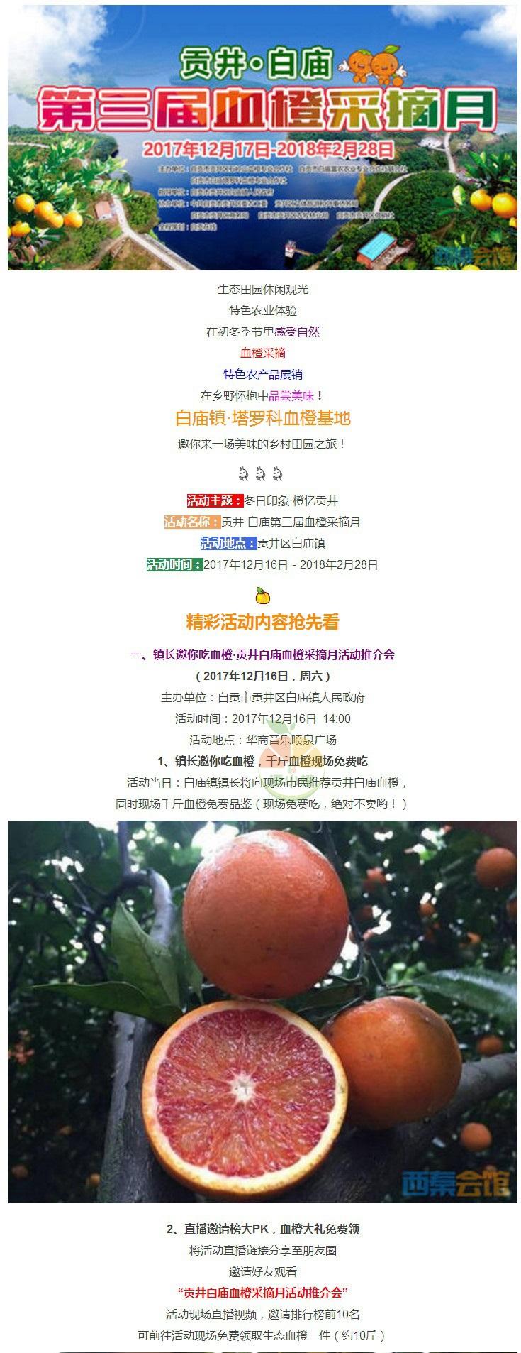 自贡白庙镇第三届血橙采摘节