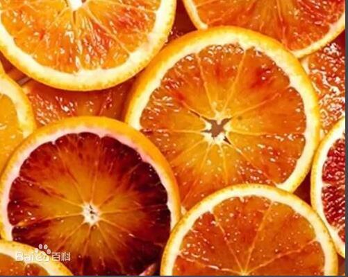 补血佳品:血橙鲜果