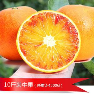 10斤血橙中果火爆推荐 包邮